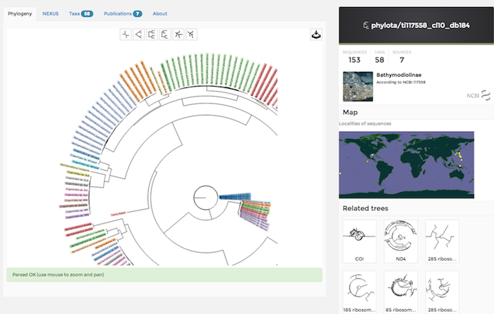 Phylogeny viewer