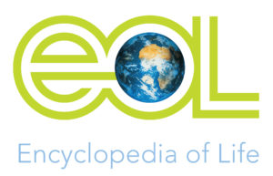 eol_logo_globe-300x193